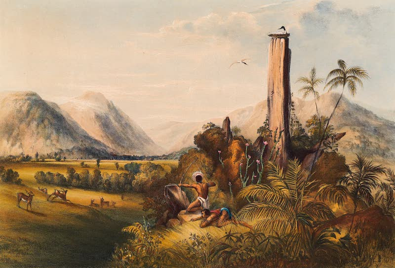 Twelve Views in the Interior of Guiana - Pure Piapa, a Remarkable Basaltic Column (1841)