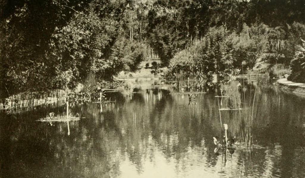 Uruguay by W. H. Koebel - Lago Del Prado : Montevideo (1911)