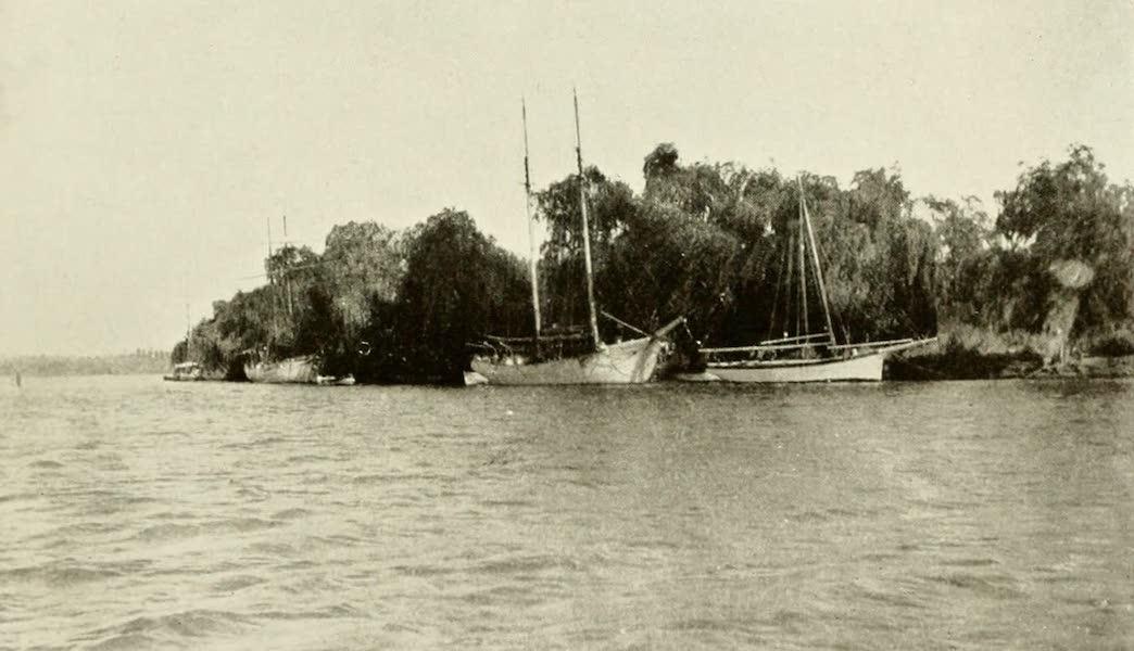 Uruguay by W. H. Koebel - On the Rio Negro (1911)