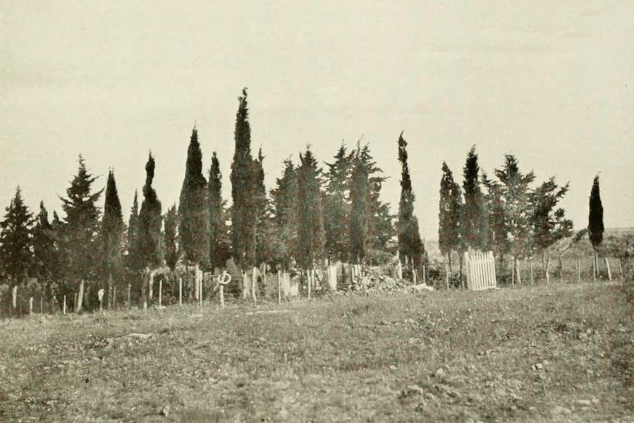 Uruguay by W. H. Koebel - A Campo Graveyard (1911)