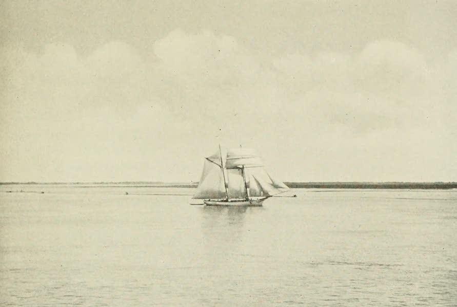 Uruguay by W. H. Koebel - On the Uruguay River (1911)