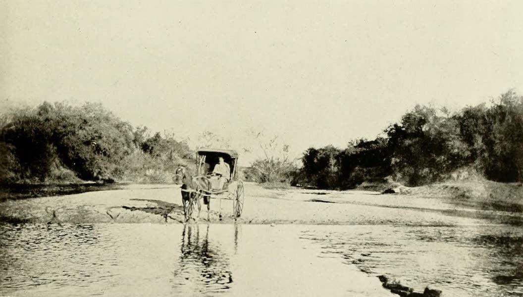 Uruguay by W. H. Koebel - A Uruguayan Stream (1911)