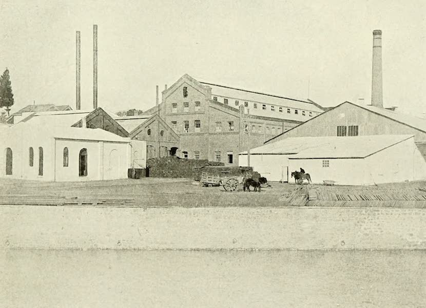 Uruguay by W. H. Koebel - A Corner of the Fray Bentos Factory (1911)