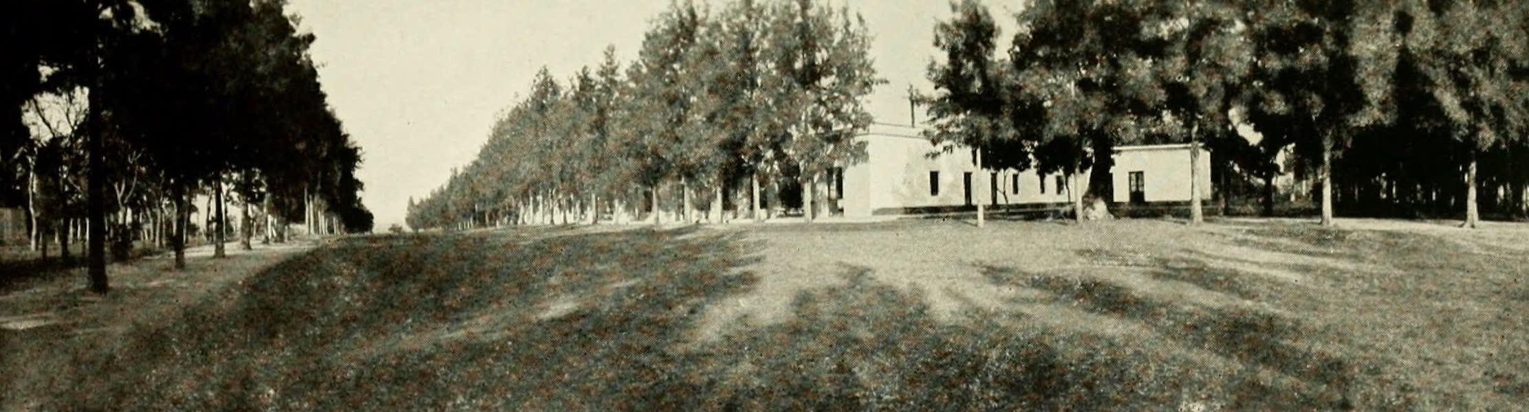 Uruguay by W. H. Koebel - The Bichadero Estancia (1911)