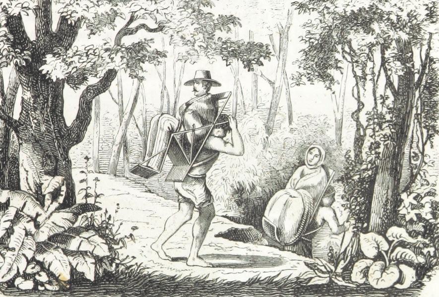 Utazas Kalifornia deli Reszeiben - A Silla (1860)