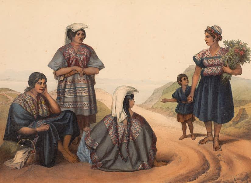 Viaje Pintoresco y Arqueolojico de la Republica Mejicana - Indias de la Sierra al S.E. de Mexico (1840)