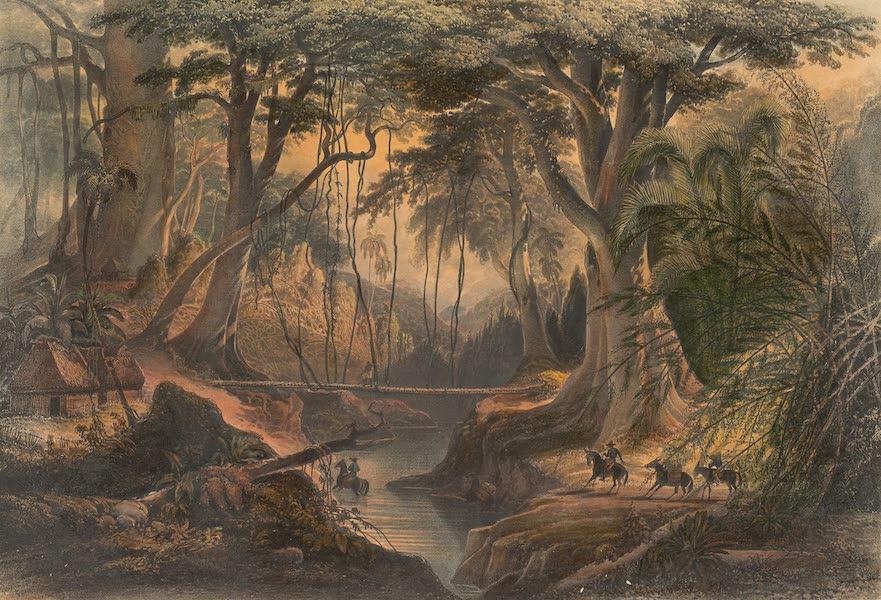 Viaje Pintoresco y Arqueolojico de la Republica Mejicana - Monte Virgen (1840)