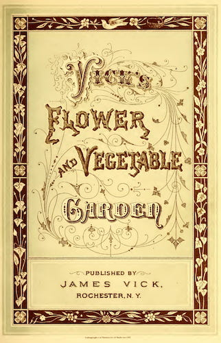 Biodiversity Heritage Library - Vick's Flower and Vegetable Garden