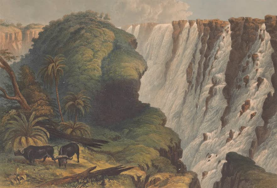 Victoria Falls, Zambesi River - The Falls from the Narrow Neck Near the Eastern Headland of the Outlet (1865)