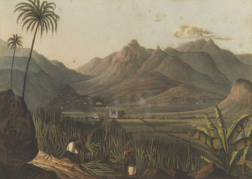Views and Costumes of the City and Neighbourhood of Rio de Janeiro - Tejuca Mountains (1822)