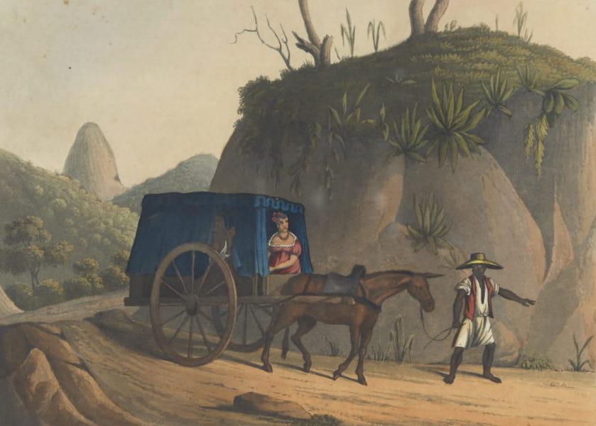 Views and Costumes of the City and Neighbourhood of Rio de Janeiro - A Pleasure Cart (1822)