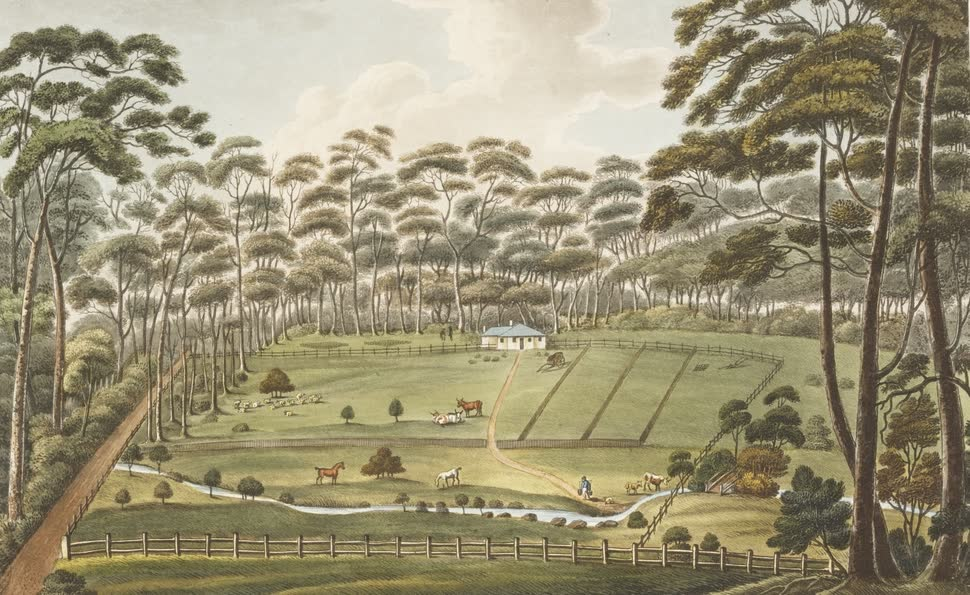 Views in Australia or New South Wales - Raby, A Farm Belonging to Alexander Riley (1825)