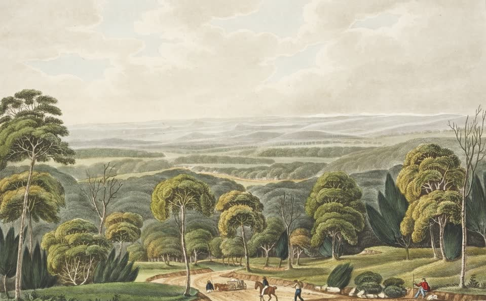 Views in Australia or New South Wales - View from near the top of Constitution Hill (1825)
