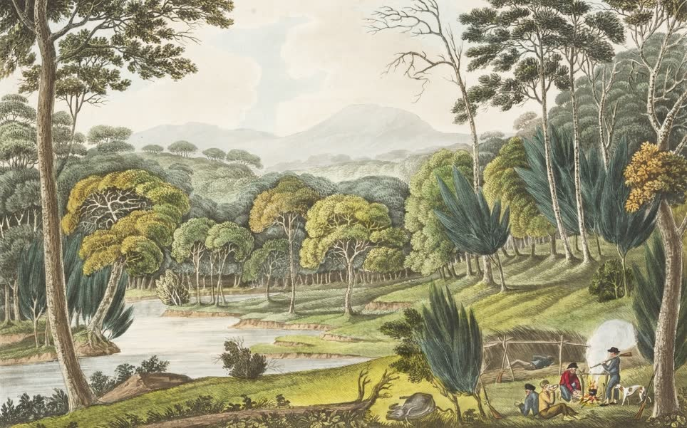 Views in Australia or New South Wales - View Upon the Napean River (1825)
