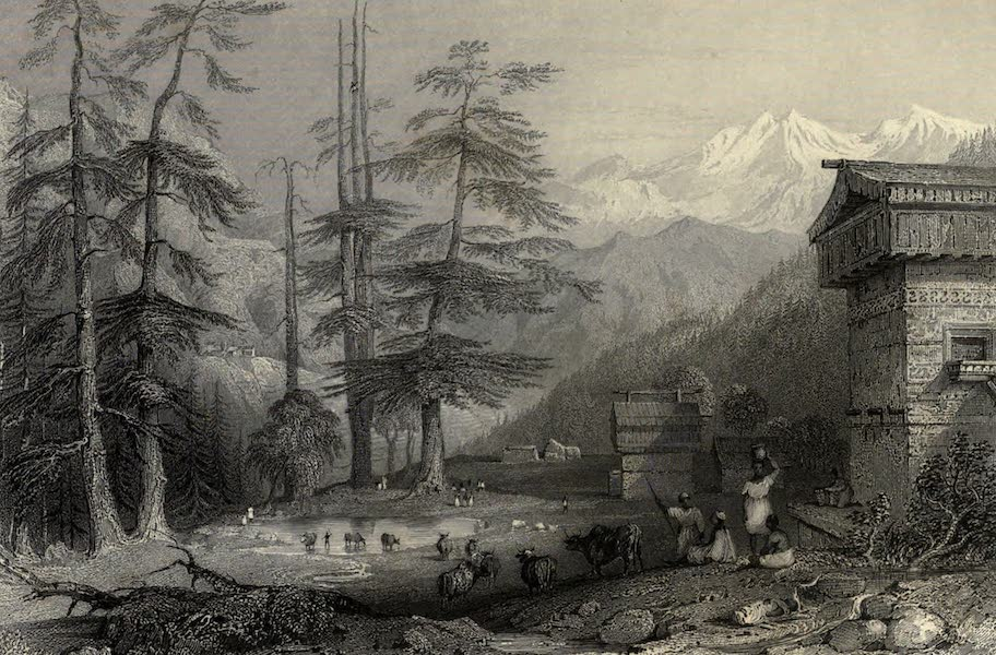 Views in India, chiefly among the Himalaya Mountains - Village of Koghera and Deodar Forest, near the Choor (1836)