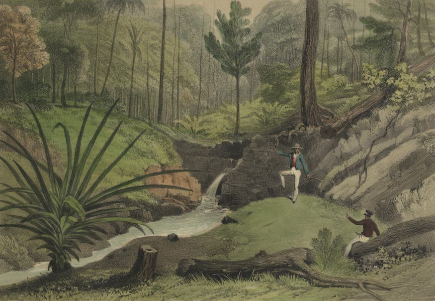 Views in the Eastern Archipelago - View of the coal seam on the Island of Labuan (1847)