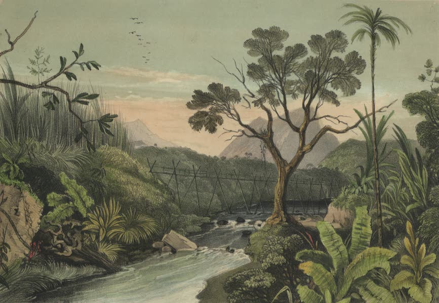 Views in the Eastern Archipelago - Dayak Bridge. Sarawak (1847)