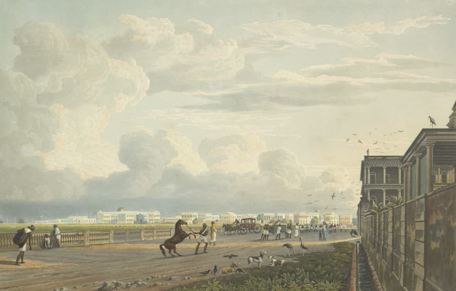 Views of Calcutta and It's Environs - A View of Esplanade Row, from the Chouringhee Road (1826)
