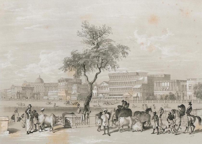 Views of Calcutta and its Environs - Esplanade (1848)