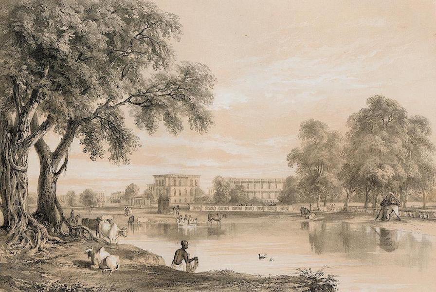 Views of Calcutta and its Environs - View of Part of Chowringhee (1848)