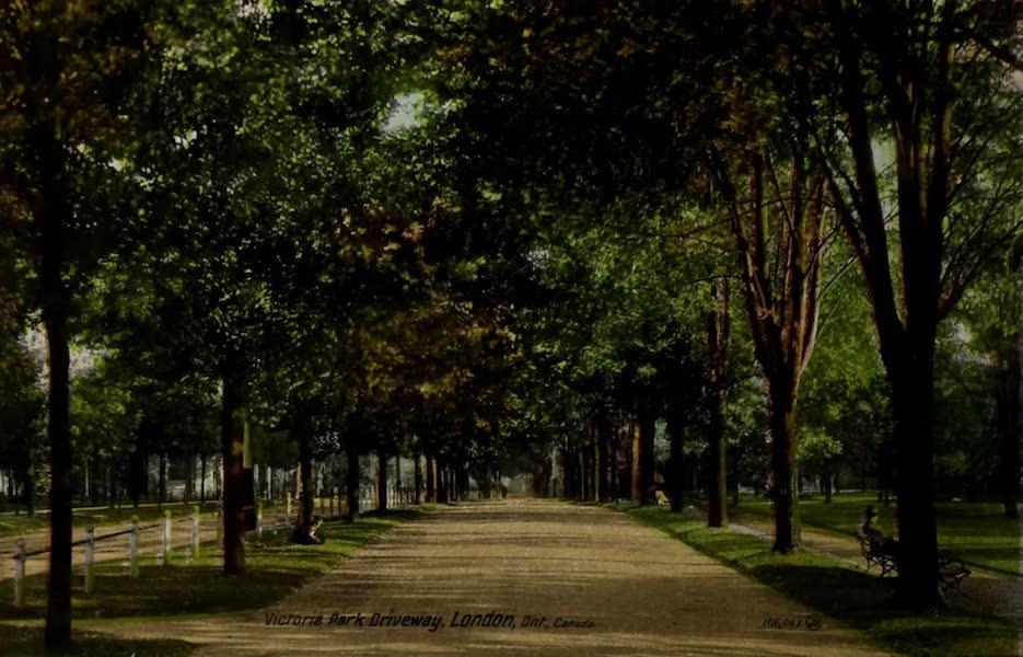 Views of London, Ontario - Victoria Park Driveway, London, Ont., Canada (1910)