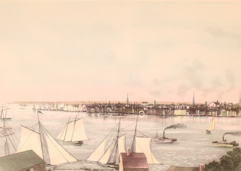 [Views of Old New York] - New York Harbor from Brooklyn, 1820 (1875)
