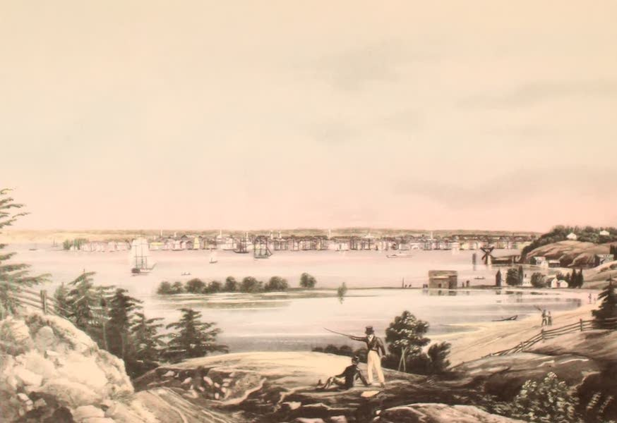 [Views of Old New York] - New York from Brooklyn Heights, 1820 (1875)