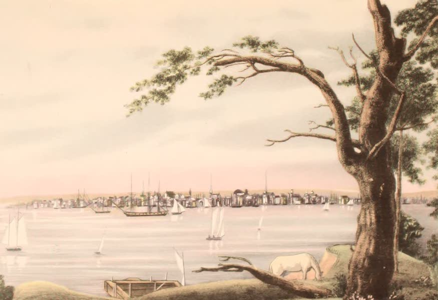 [Views of Old New York] - New York from Long Island, 1802 (1875)