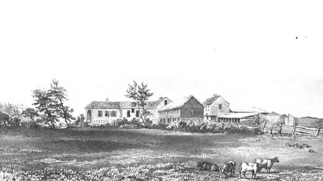 Views of St. Helena - Longwood Old House (1857)
