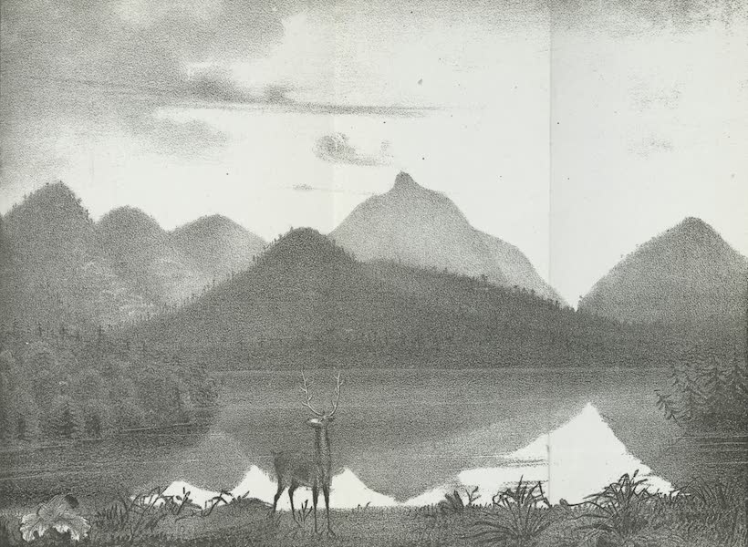 Views of the Adirondack Mountain Region - View of Dial Mountain (1838)