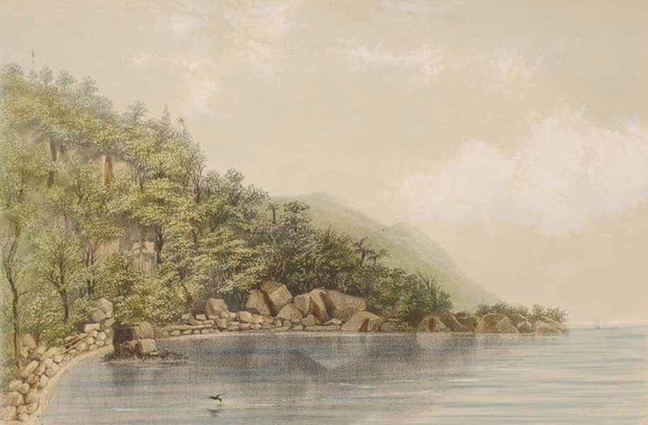 Views of the Island of Dominica - Rodney's Rock (1849)