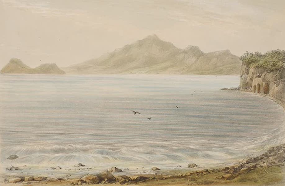 Views of the Island of Dominica - Prince Rupert's Bay (1849)