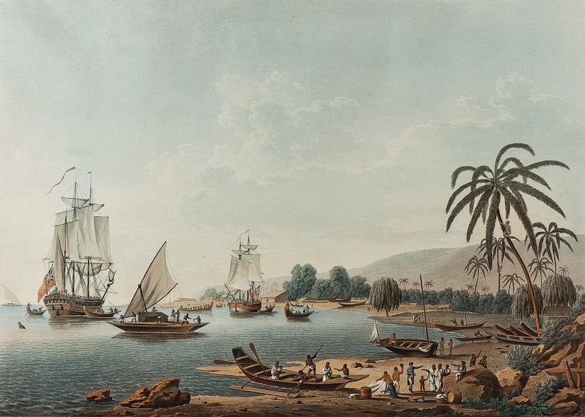 Views of the South Seas - View of Charlotte Sound in New Zealand (1788)