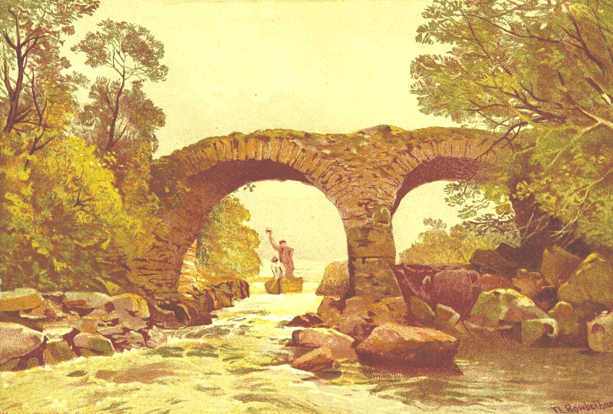 Views of Wicklow and Killarney - Old Weir Bridge (1875)