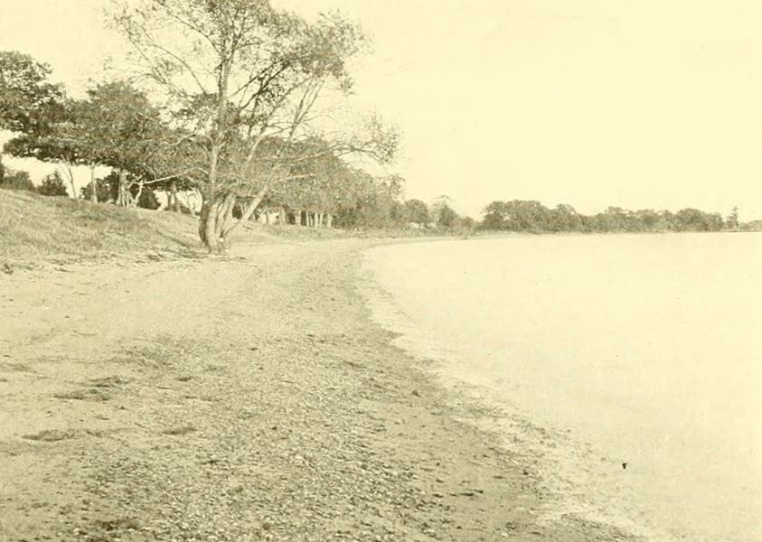 Virginia: the Old Dominion - The Beach at Jamestown Island (1921)
