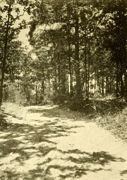 Virginia: the Old Dominion - The Road Across the Island (1921)