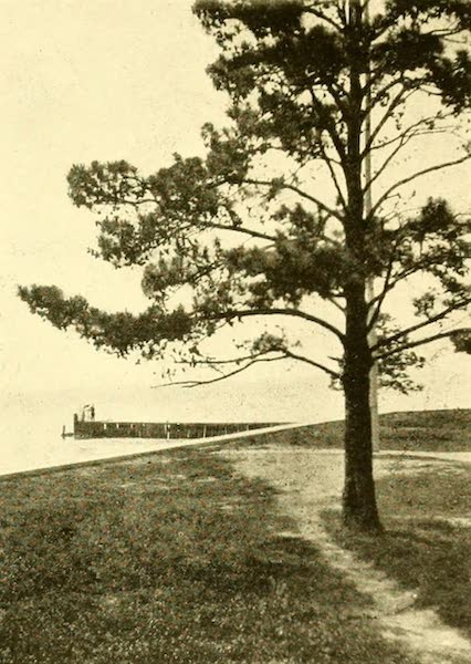 Virginia: the Old Dominion - Looking Toward the First Landing-place (1921)