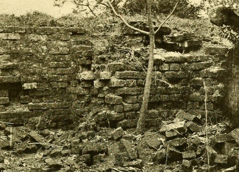 Virginia: the Old Dominion - One of the Earliest Excavations (1921)