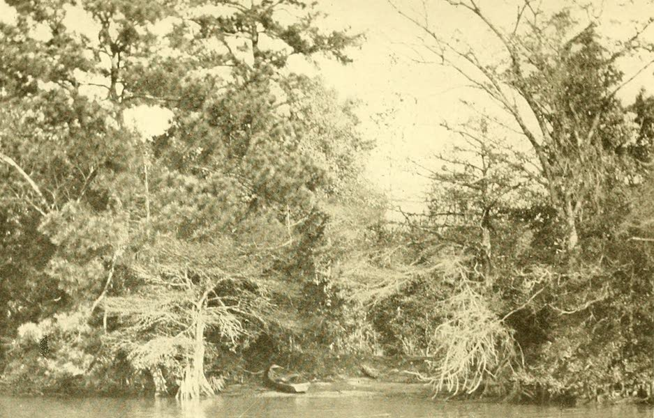 """Virginia: the Old Dominion - """"Little Boats Were Nosing Into the Bank Here and There"""" (1921)"""