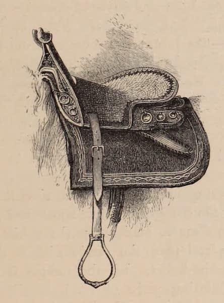 Visits to High Tartary, Yarkand, and Kashgar - Tartar Saddle (1871)