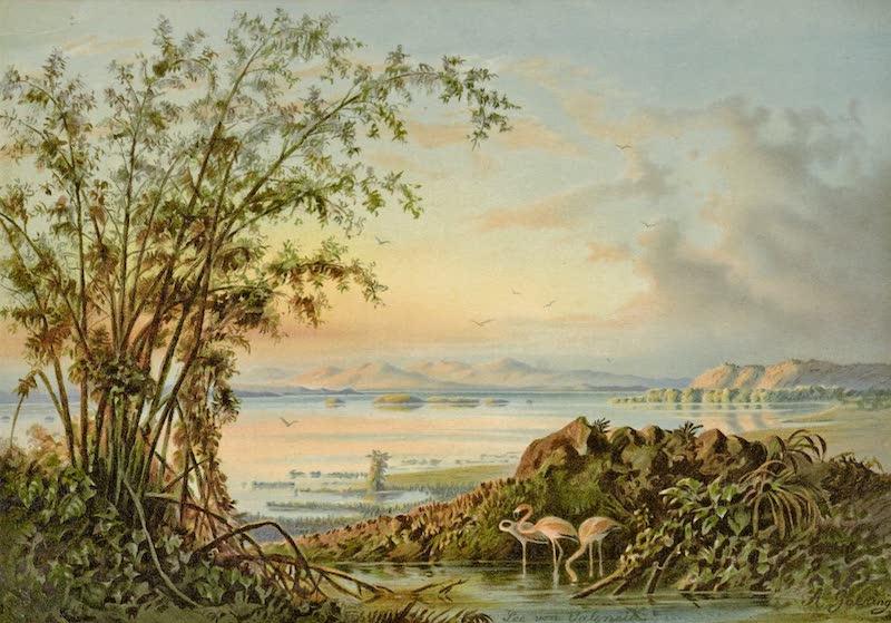 See von Valencia