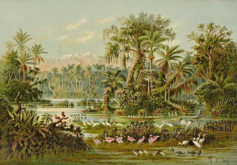 Lagune im Zuliagebiet