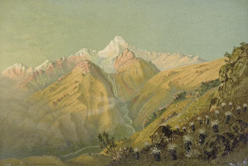 La Concha Sierra Nevada