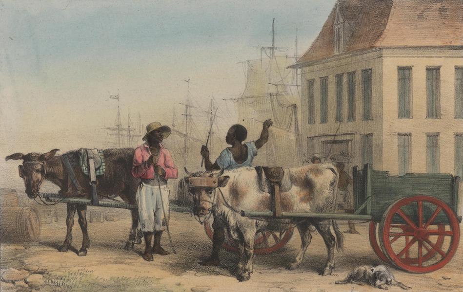 Voyage a Surinam - Poids de la Ville; un bosch-negre avec sa charrette; un voiturier du port avec sa charette (1839)