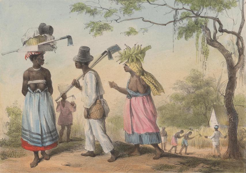 Voyage a Surinam - Esclaves se rendant au travail (1839)