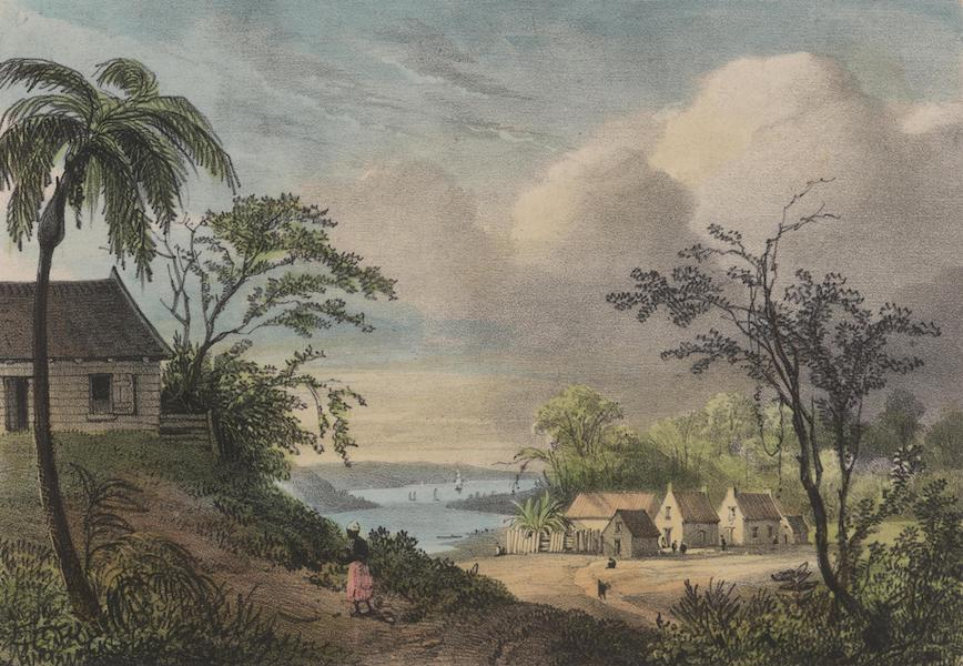 Voyage a Surinam - Village habite par les juifs au sommet de la montagne (1839)