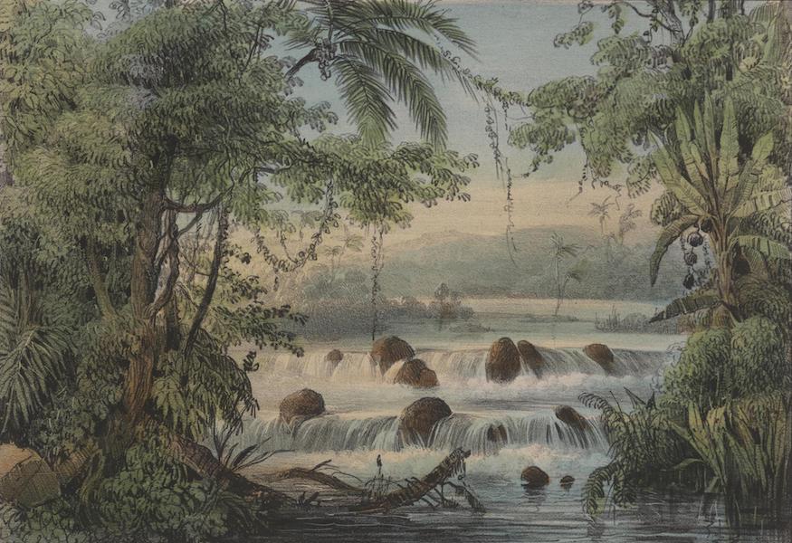 Voyage a Surinam - Cascade au-dela du Blaauwe Berg (1839)