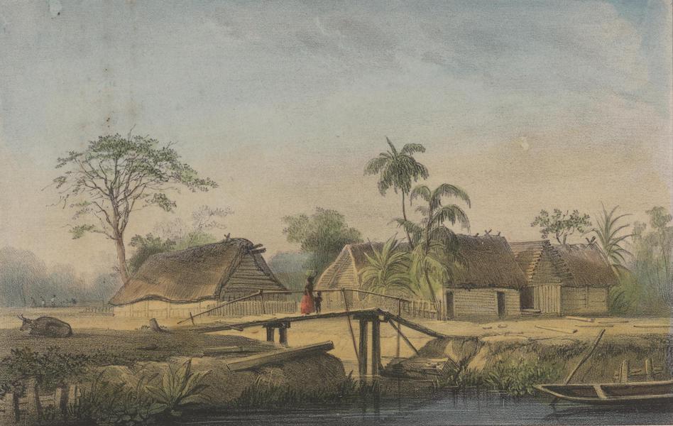 Voyage a Surinam - Autre maison de planteur (1839)