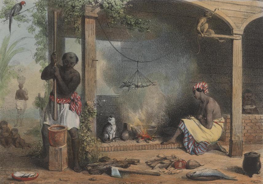 Voyage a Surinam - Un combe (1839)