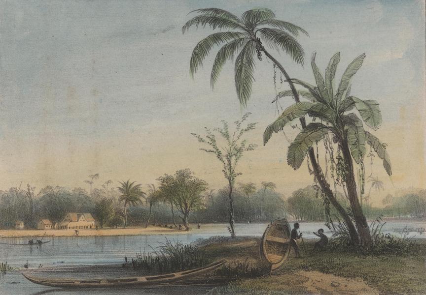 Voyage a Surinam - Hameau de negres (1839)